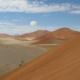 Desert Running
